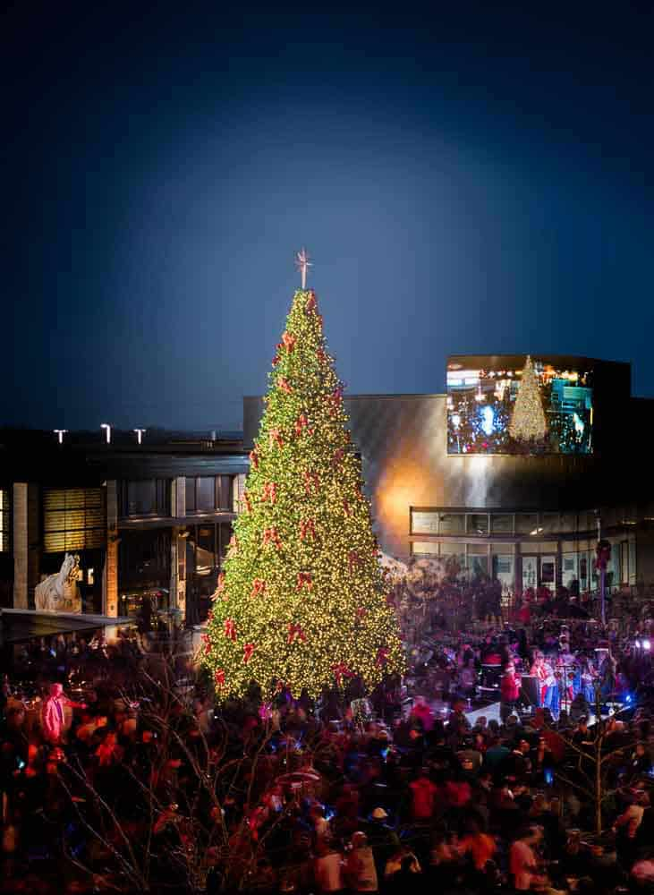 Photo shows a Christmas tree lighting at an out door shopping center. Photo taken for Prince William Living magazine.