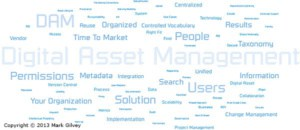 Word Cloud Created for Photo Illustration